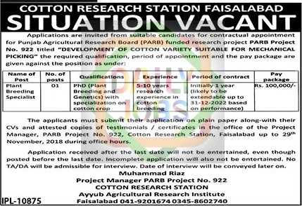 Jobs In Cotton Research Station Faisalabad for Plant Breeding
