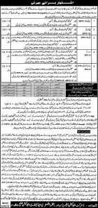 NTS Jobs In Elementary & Secondary Education Battagram Male